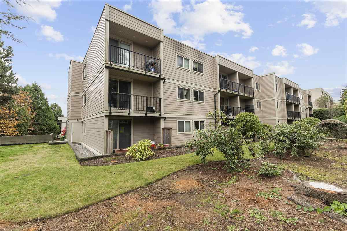 """Main Photo: 107 1121 HOWIE Avenue in Coquitlam: Central Coquitlam Condo for sale in """"Willows"""" : MLS®# R2516911"""