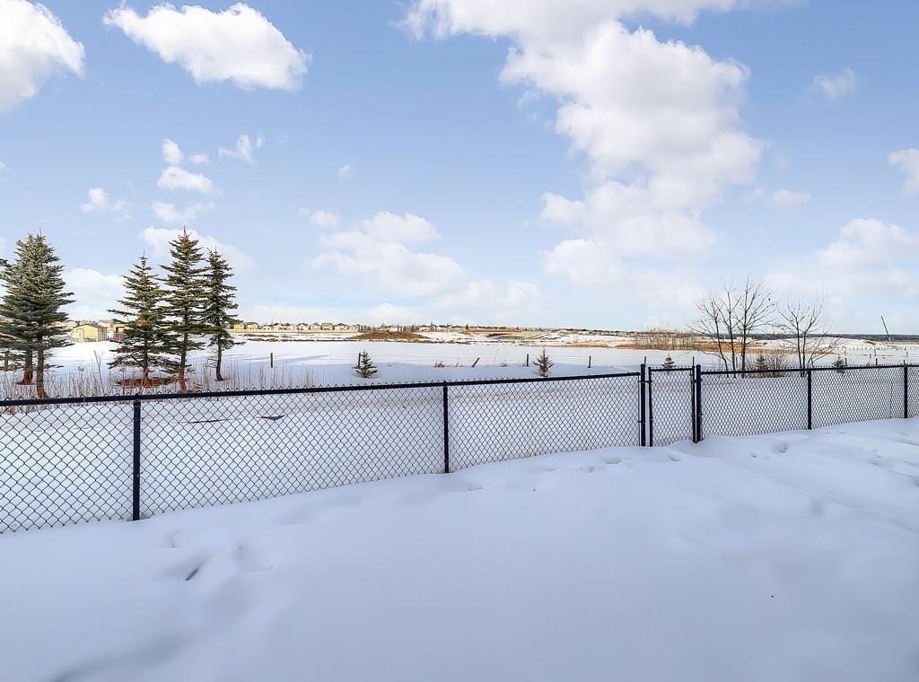 Photo 36: Photos: 88 SILVERADO SKIES Manor SW in Calgary: Silverado Detached for sale : MLS®# C4284584