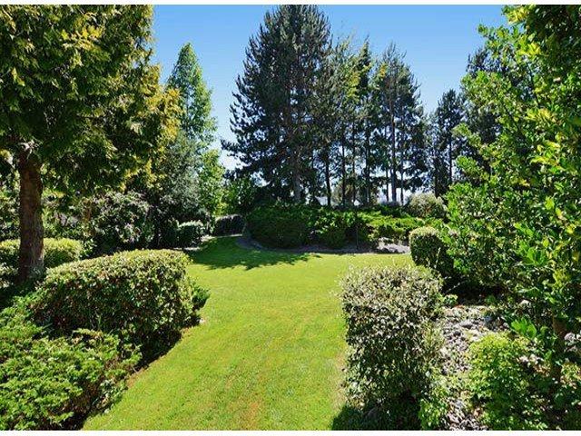 "Photo 17: Photos: 305 12890 17TH Avenue in Surrey: Crescent Bch Ocean Pk. Condo for sale in ""Ocean Park Place"" (South Surrey White Rock)  : MLS®# F1316896"