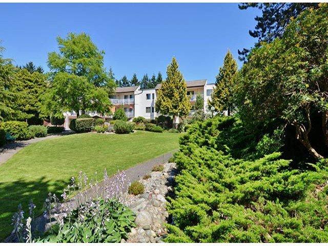 "Photo 13: Photos: 305 12890 17TH Avenue in Surrey: Crescent Bch Ocean Pk. Condo for sale in ""Ocean Park Place"" (South Surrey White Rock)  : MLS®# F1316896"