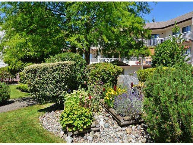 "Photo 14: Photos: 305 12890 17TH Avenue in Surrey: Crescent Bch Ocean Pk. Condo for sale in ""Ocean Park Place"" (South Surrey White Rock)  : MLS®# F1316896"