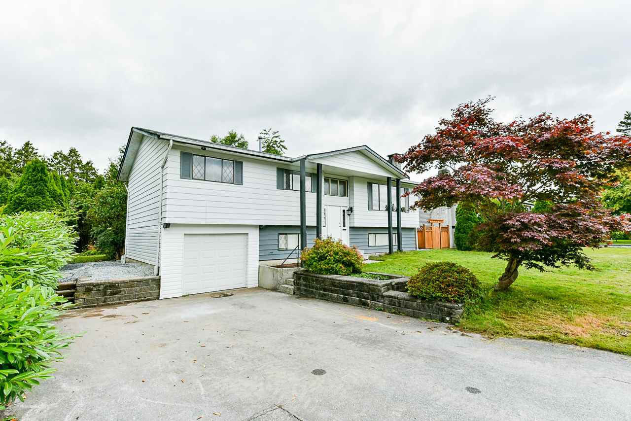 Main Photo: 22871 PURDEY Avenue in Maple Ridge: East Central House for sale : MLS®# R2471478