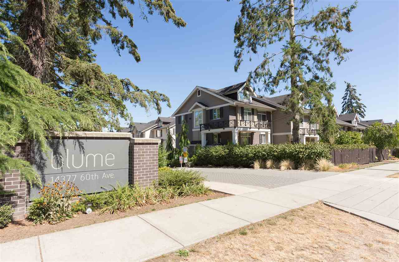 Main Photo: 1 14377 60 AVENUE in Surrey: Sullivan Station Townhouse for sale : MLS®# R2103628