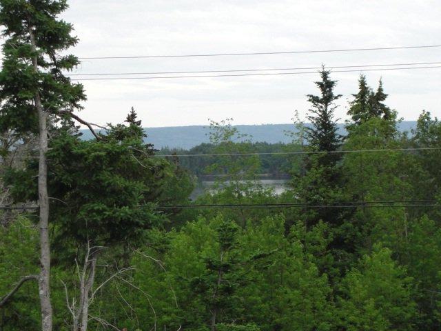 Main Photo: 0000 Eskasoni Road in Island View: 207-C. B. County Vacant Land for sale (Cape Breton)  : MLS®# 201917855