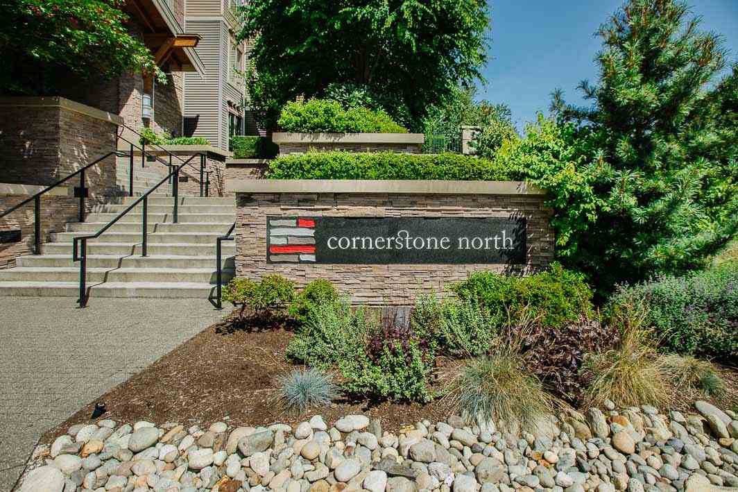 "Main Photo: 116 5655 210A Street in Langley: Salmon River Condo for sale in ""CORNERSTONE NORTH"" : MLS®# R2478779"