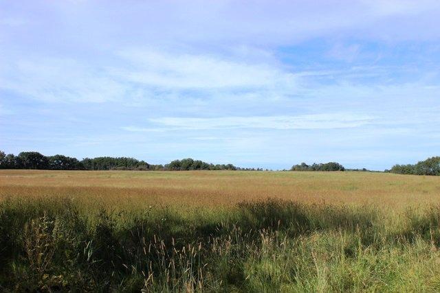 Main Photo: RG RD 415: Rural Bonnyville M.D. Rural Land/Vacant Lot for sale : MLS®# E4170951