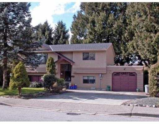 Main Photo: 12055 210TH ST in Maple Ridge: Northwest Maple Ridge House for sale : MLS®# V579471