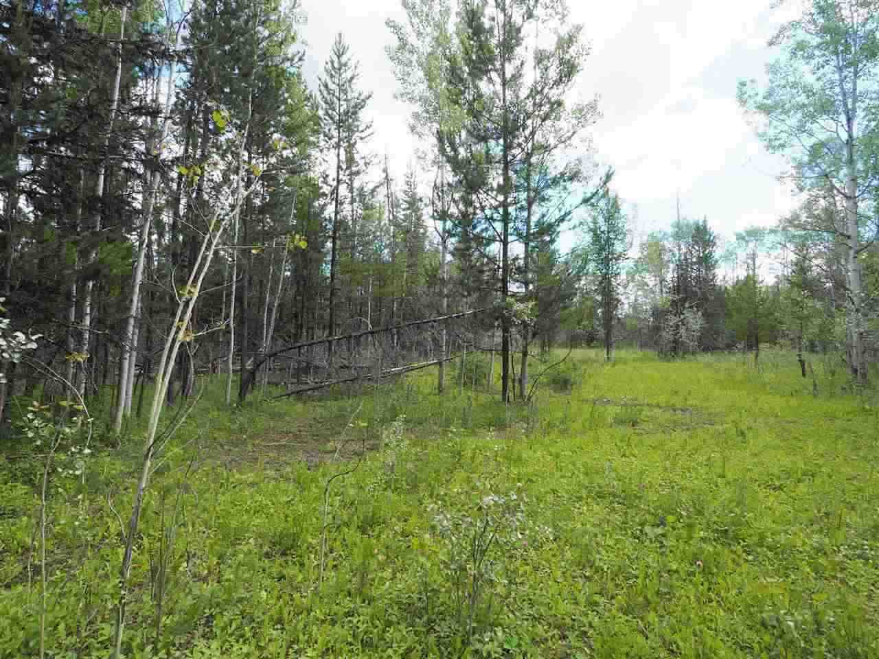 Main Photo: LOT 8 UPPER HOUSEMAN Road: Forest Grove Land for sale (100 Mile House (Zone 10))  : MLS®# R2455901