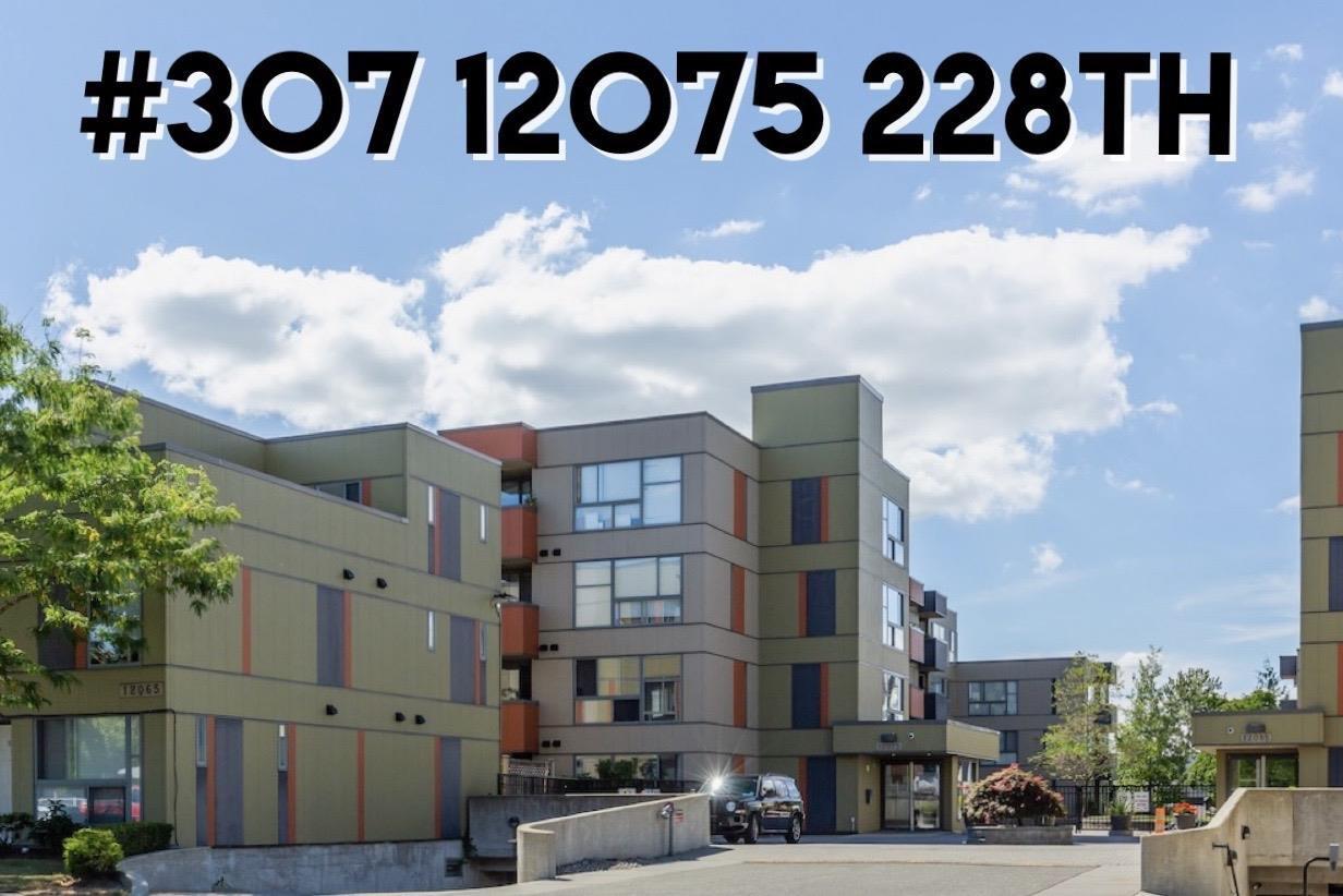 "Main Photo: 307 12075 228 Street in Maple Ridge: East Central Condo for sale in ""THE RIO"" : MLS®# R2491306"