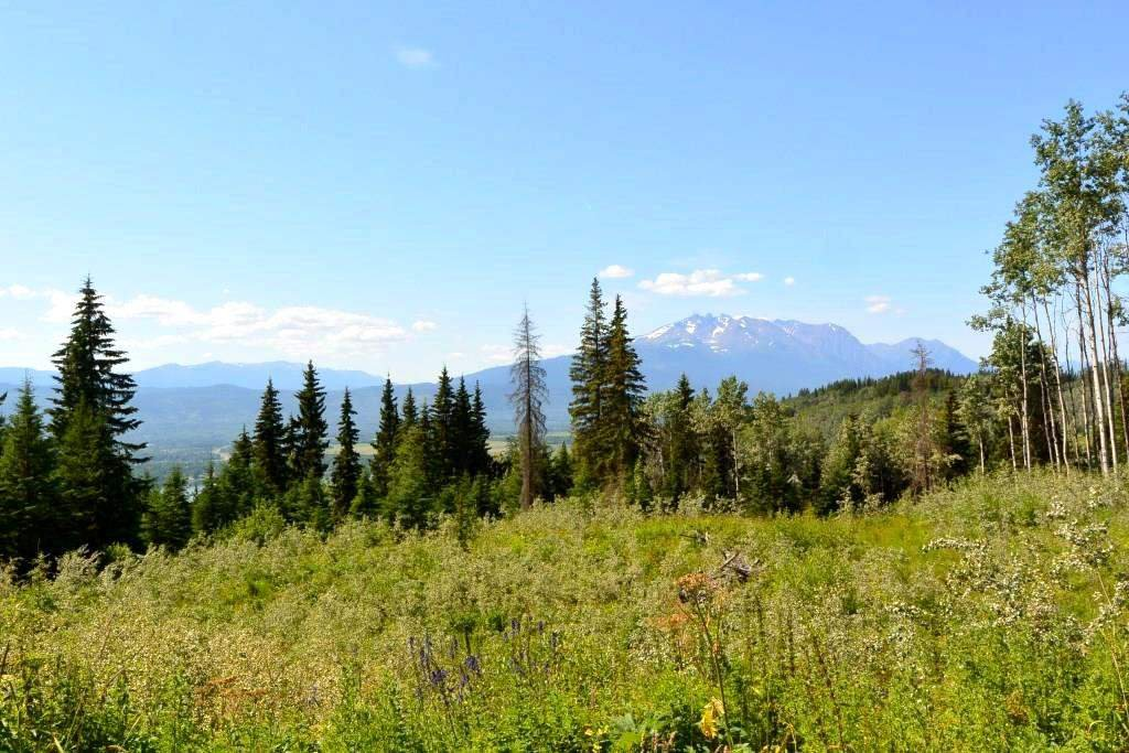 """Main Photo: LOT 1 HISLOP Road in Smithers: Smithers - Rural Land for sale in """"Hislop Road Area"""" (Smithers And Area (Zone 54))  : MLS®# R2491414"""
