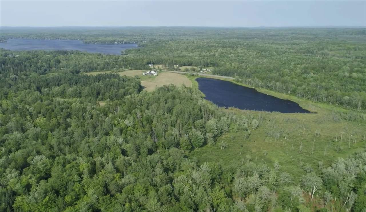 Main Photo: 1147 Highway 12 in Blue Mountain: 404-Kings County Vacant Land for sale (Annapolis Valley)  : MLS®# 202014038