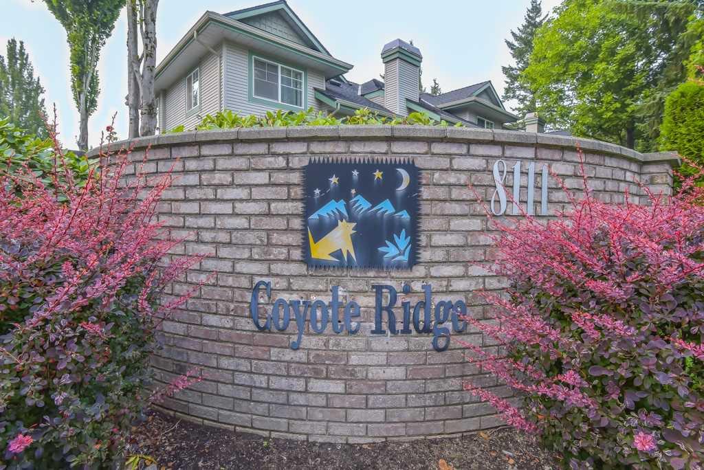 "Main Photo: 39 8111 160 Street in Surrey: Fleetwood Tynehead Townhouse for sale in ""Coyote Ridge"" : MLS®# R2498492"