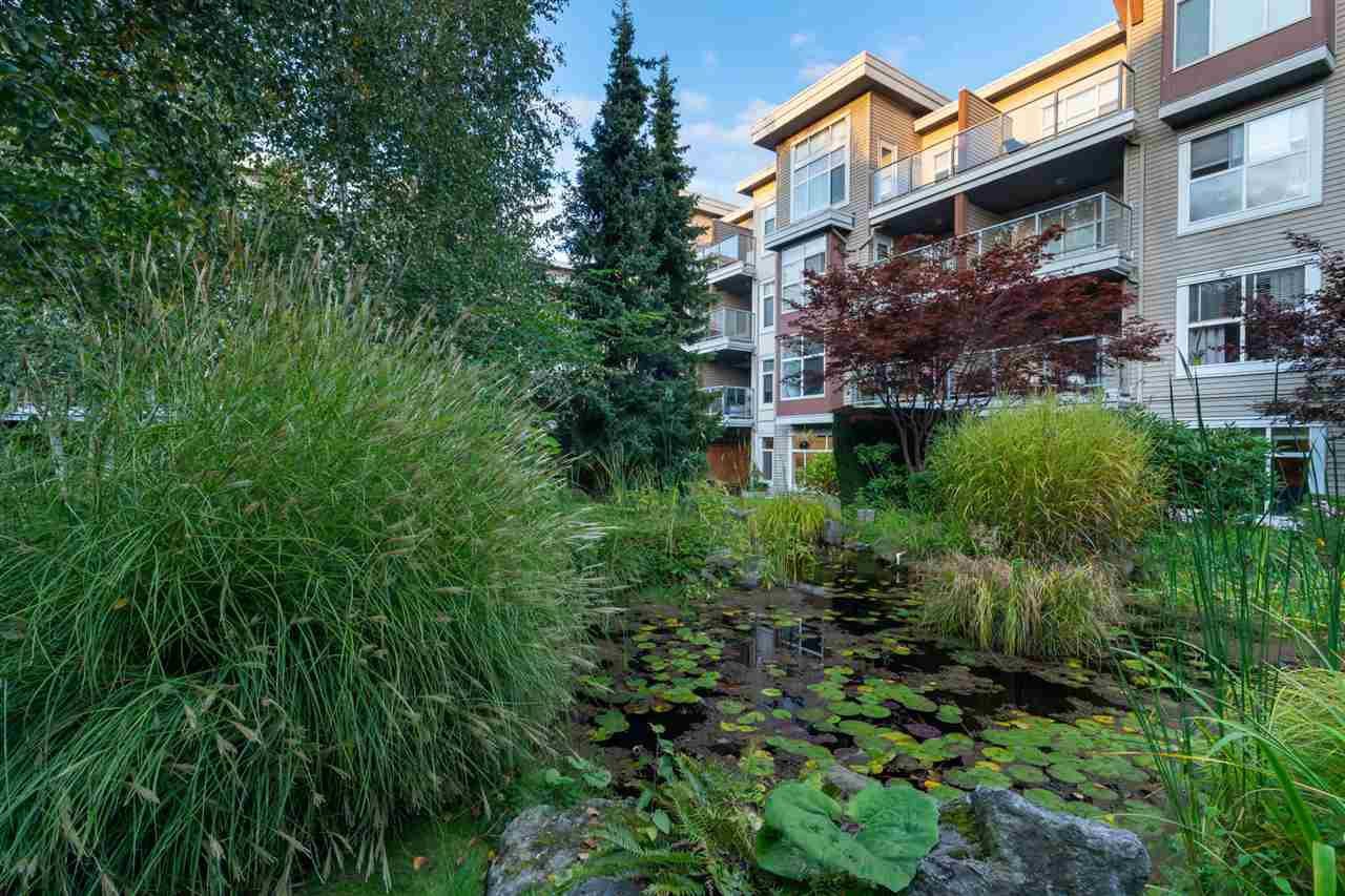 Main Photo: 129 5700 ANDREWS ROAD in Richmond: Steveston South Condo for sale : MLS®# R2411036
