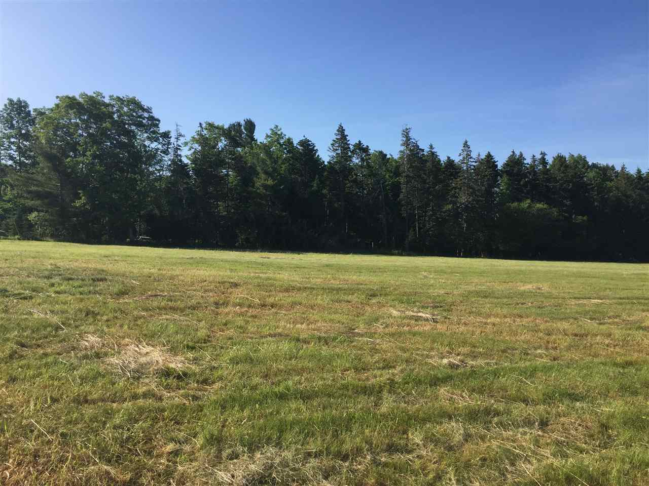 Photo 1: Photos: Lot 4 Pine Meadows Subdivision in Pine Grove: 405-Lunenburg County Vacant Land for sale (South Shore)  : MLS®# 202007559