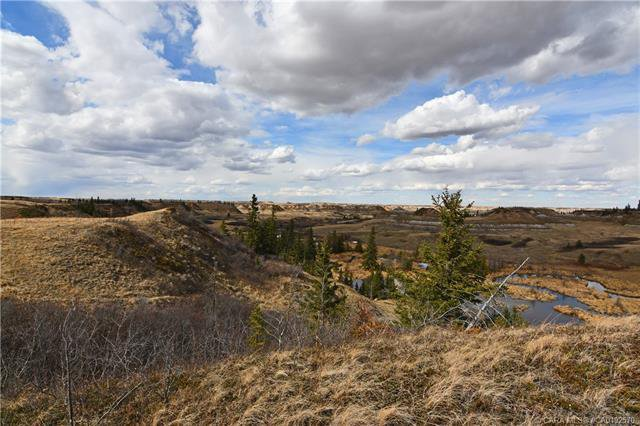 Main Photo: ON Township Road 394 in Rural Paintearth No. 18, County of: Land for sale : MLS®# CA0192570