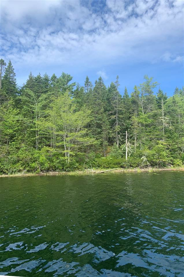 Main Photo: Acreage East Chezzetcook Road in East Chezzetcook: 31-Lawrencetown, Lake Echo, Porters Lake Vacant Land for sale (Halifax-Dartmouth)  : MLS®# 202015825