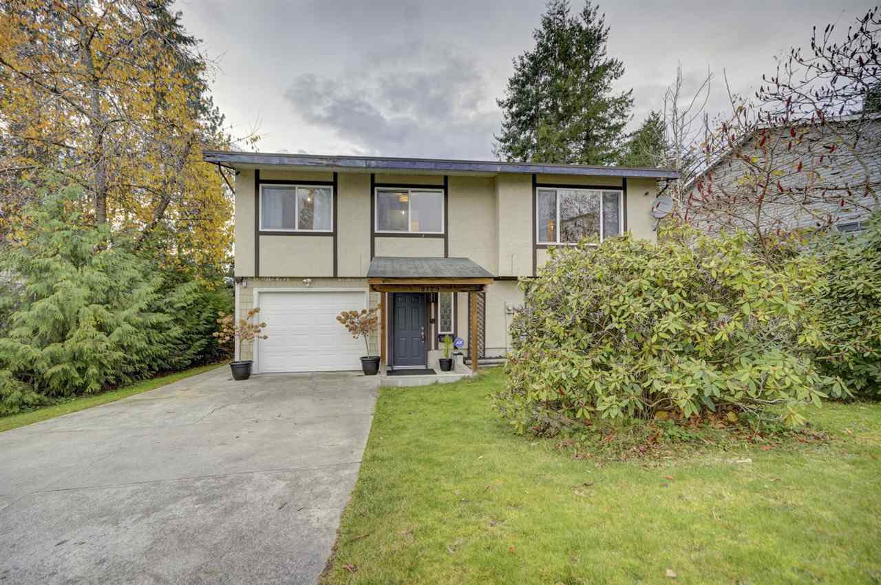 Photo 1: Photos: 8129 BOBCAT Drive in Mission: Mission BC House for sale : MLS®# R2420401