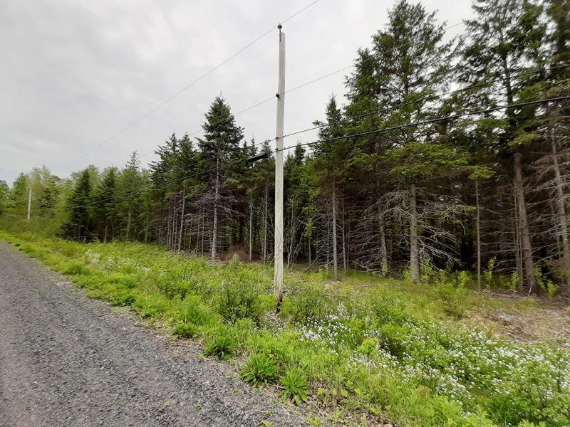 Main Photo: Lot A4 Aylesford Road in Lake Paul: 404-Kings County Vacant Land for sale (Annapolis Valley)  : MLS®# 202009531
