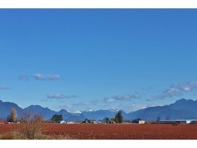 Flat, fertile & usable farmland