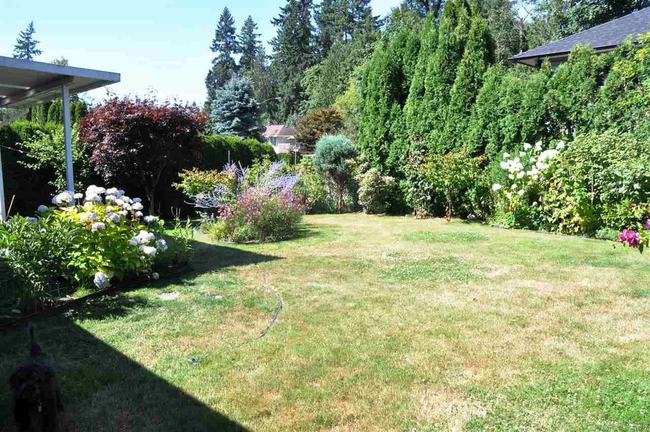 Photo 13: Photos: 11959 238B Street in Maple Ridge: Cottonwood MR House for sale : MLS®# R2392514
