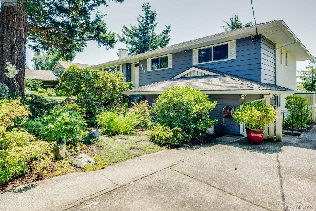 Main Photo: 1703 Kenmore Rd in VICTORIA: SE Gordon Head Single Family Detached for sale (Saanich East)  : MLS®# 822594