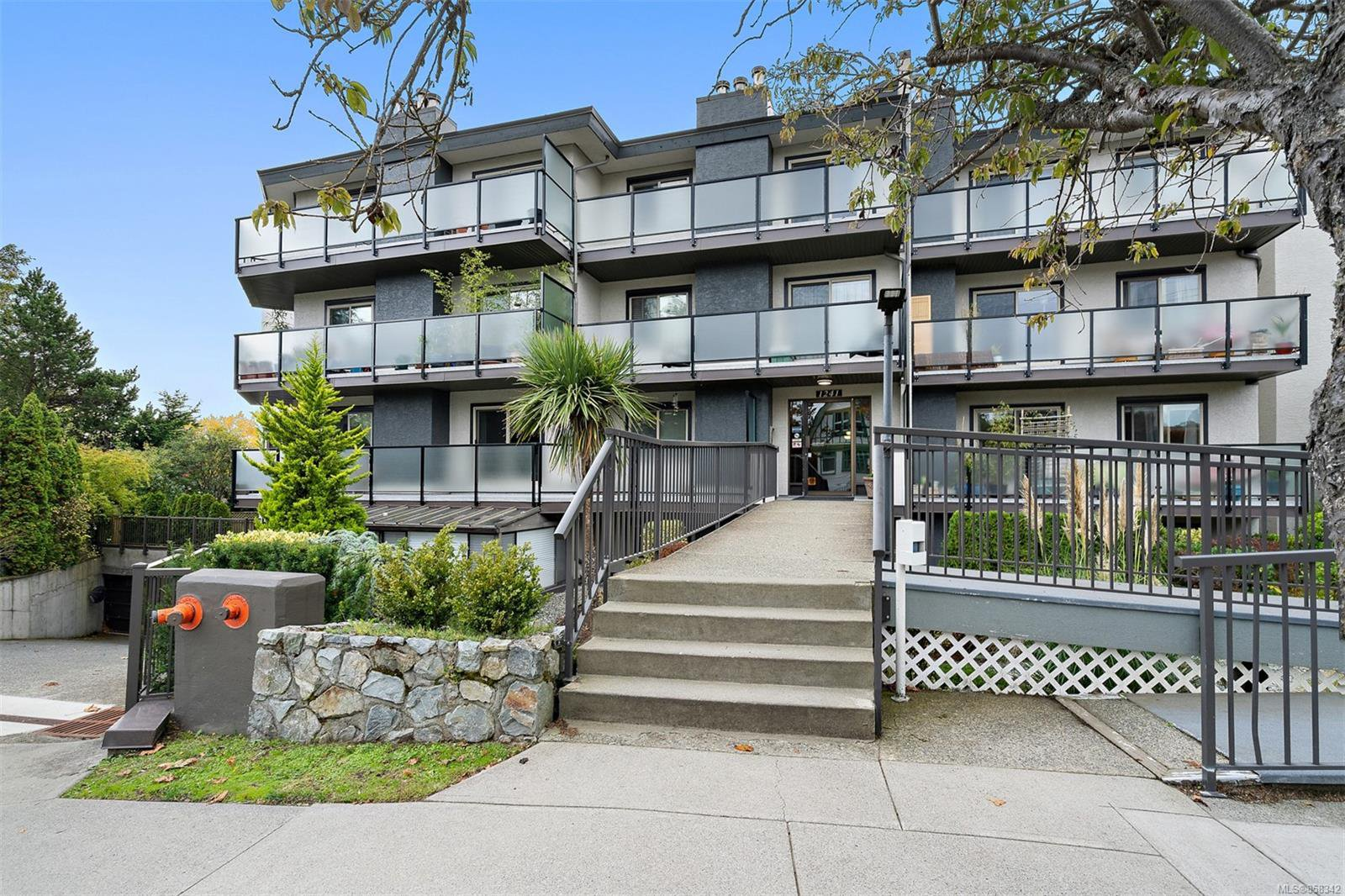 Main Photo: 206 1241 Fairfield Rd in : Vi Fairfield West Condo for sale (Victoria)  : MLS®# 858342