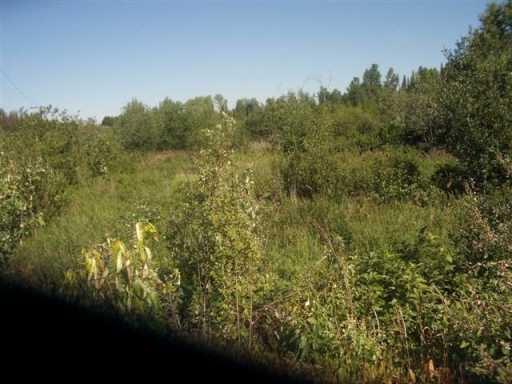 """Main Photo: DEWEY RD in Prince George: Upper Fraser Land for sale in """"SINCLAIR MILLS"""" (PG Rural East (Zone 80))  : MLS®# N162455"""