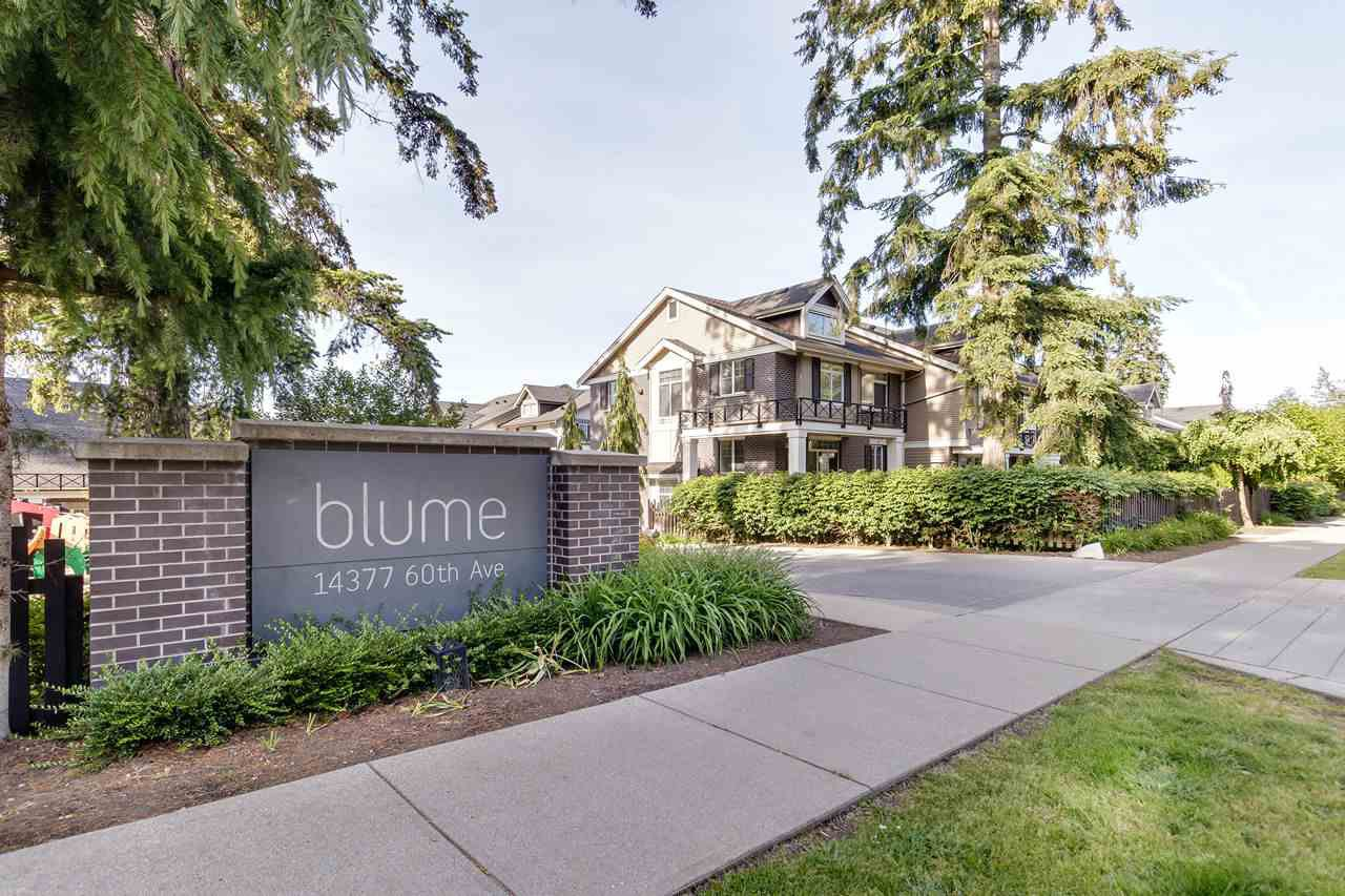 """Main Photo: 34 14377 60 Avenue in Surrey: Sullivan Station Townhouse for sale in """"BLUME"""" : MLS®# R2461233"""