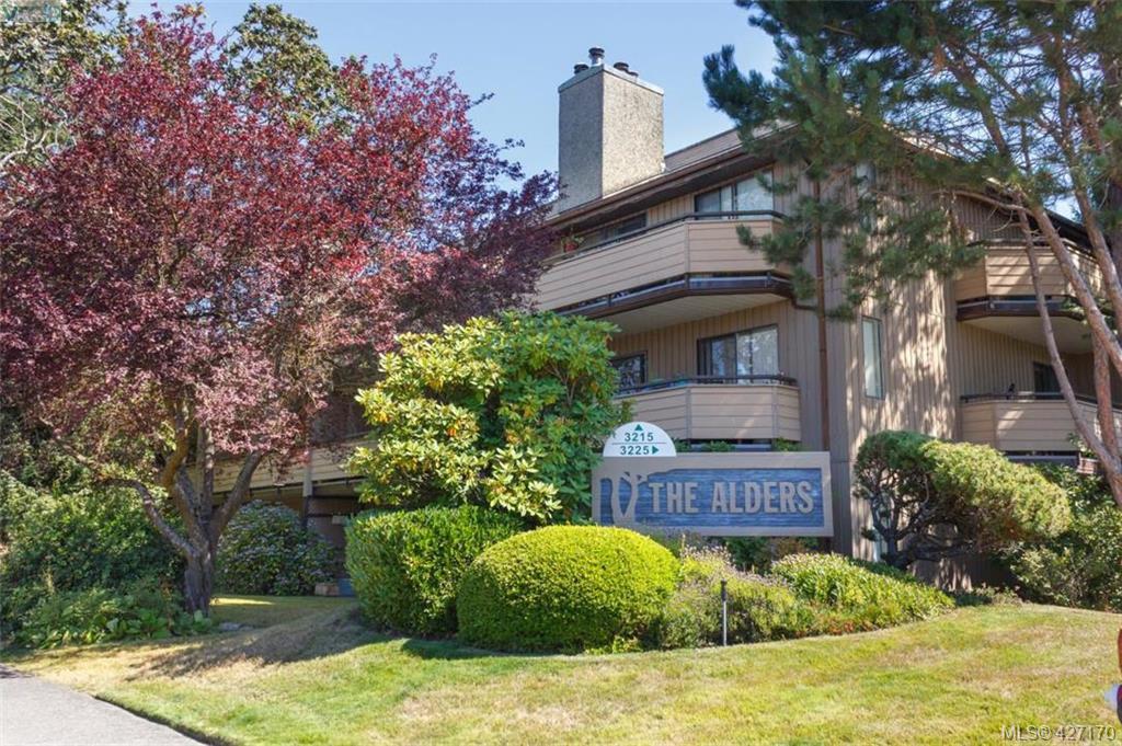 Main Photo: 204 3215 Alder St in VICTORIA: SE Quadra Condo Apartment for sale (Saanich East)  : MLS®# 841533
