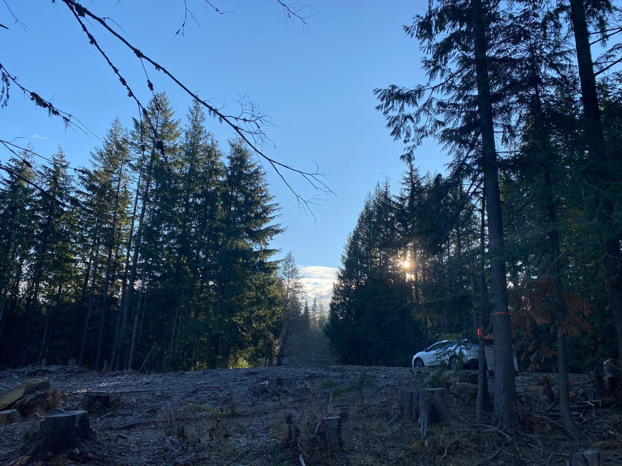 Main Photo: Lot 1 RED MOUNTAIN ROAD in Rossland: Vacant Land for sale : MLS®# 2455880