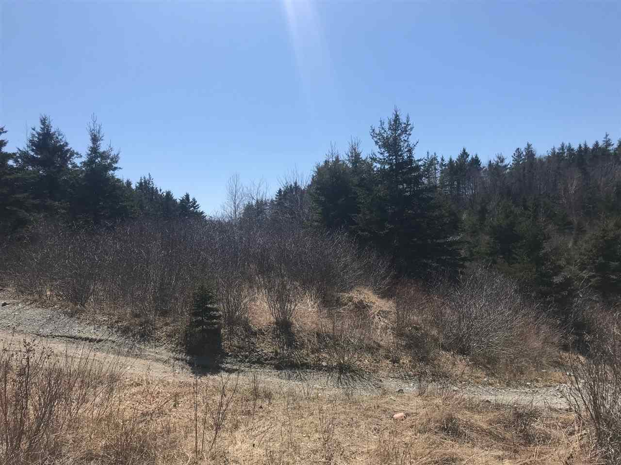Photo 6: Photos: 11574 Highway 7 in Lake Charlotte: 35-Halifax County East Vacant Land for sale (Halifax-Dartmouth)  : MLS®# 201927372