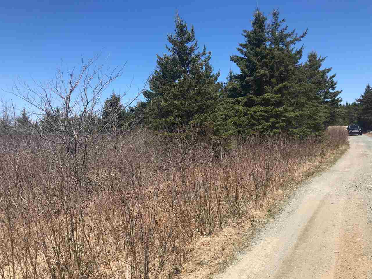 Photo 8: Photos: 11574 Highway 7 in Lake Charlotte: 35-Halifax County East Vacant Land for sale (Halifax-Dartmouth)  : MLS®# 201927372