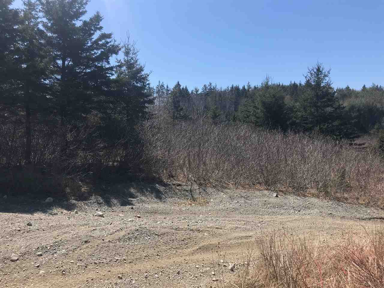 Photo 9: Photos: 11574 Highway 7 in Lake Charlotte: 35-Halifax County East Vacant Land for sale (Halifax-Dartmouth)  : MLS®# 201927372