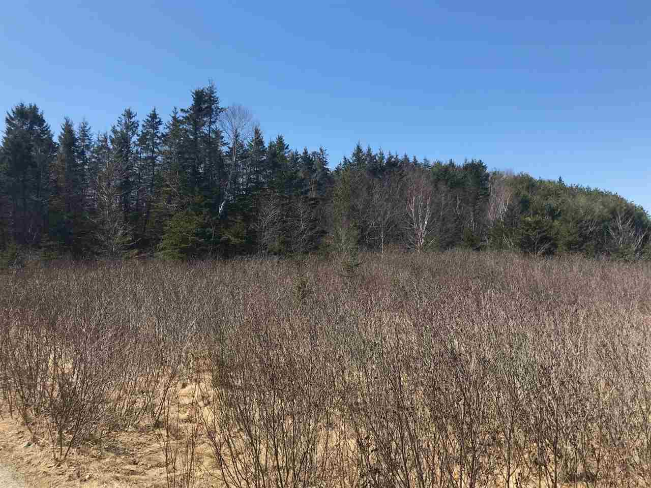 Photo 3: Photos: 11574 Highway 7 in Lake Charlotte: 35-Halifax County East Vacant Land for sale (Halifax-Dartmouth)  : MLS®# 201927372