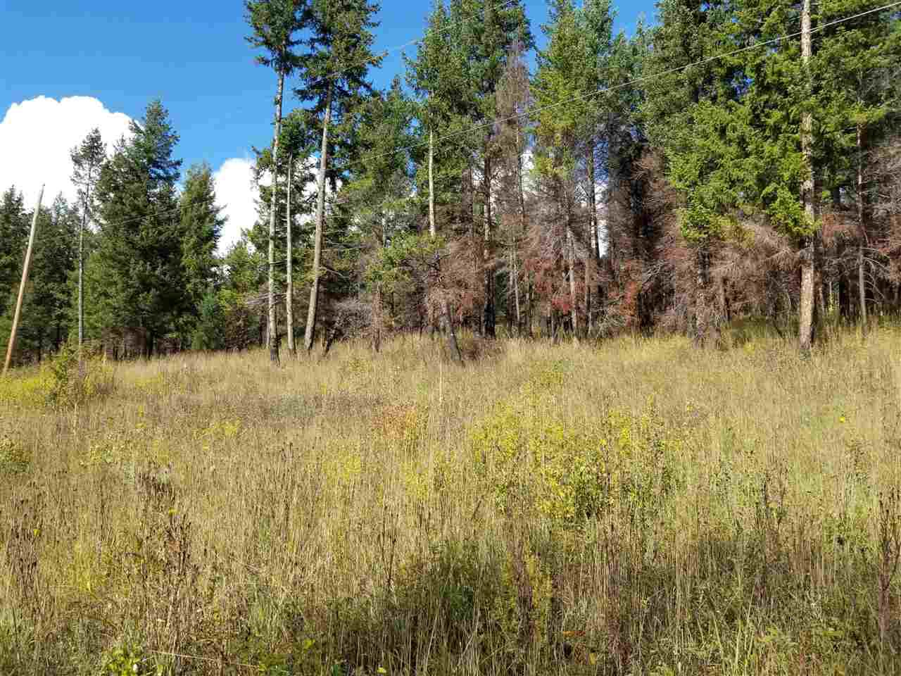 Main Photo: 5197 MOUNTAIN HOUSE Road in Williams Lake: Williams Lake - Rural North Land for sale (Williams Lake (Zone 27))  : MLS®# R2402749
