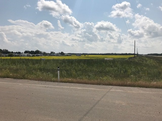 Main Photo: 57220 RR 231: Rural Sturgeon County Rural Land/Vacant Lot for sale : MLS®# E4165186