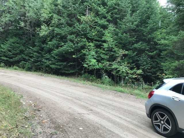 Photo 7: Photos: 0 Crawford Road in Bancroft: Property for sale : MLS®# X4561339
