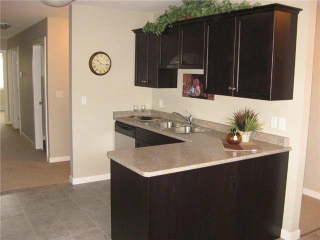 """Photo 3: Photos: 11 9707 99 Avenue: Taylor Condo for sale in """"LONE WOLF ESTATES"""" (Fort St. John (Zone 60))  : MLS®# R2469445"""