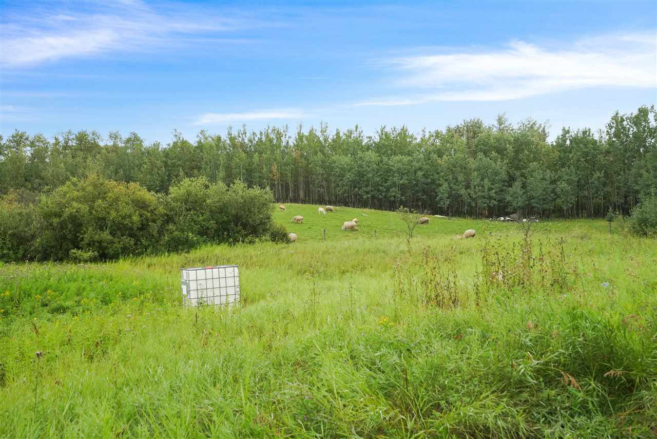 Main Photo: 175 52550 Rge Rd 222: Rural Strathcona County Rural Land/Vacant Lot for sale : MLS®# E4198854