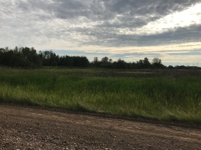 Main Photo: RR 225 Twp 610: Rural Thorhild County Rural Land/Vacant Lot for sale : MLS®# E4191742