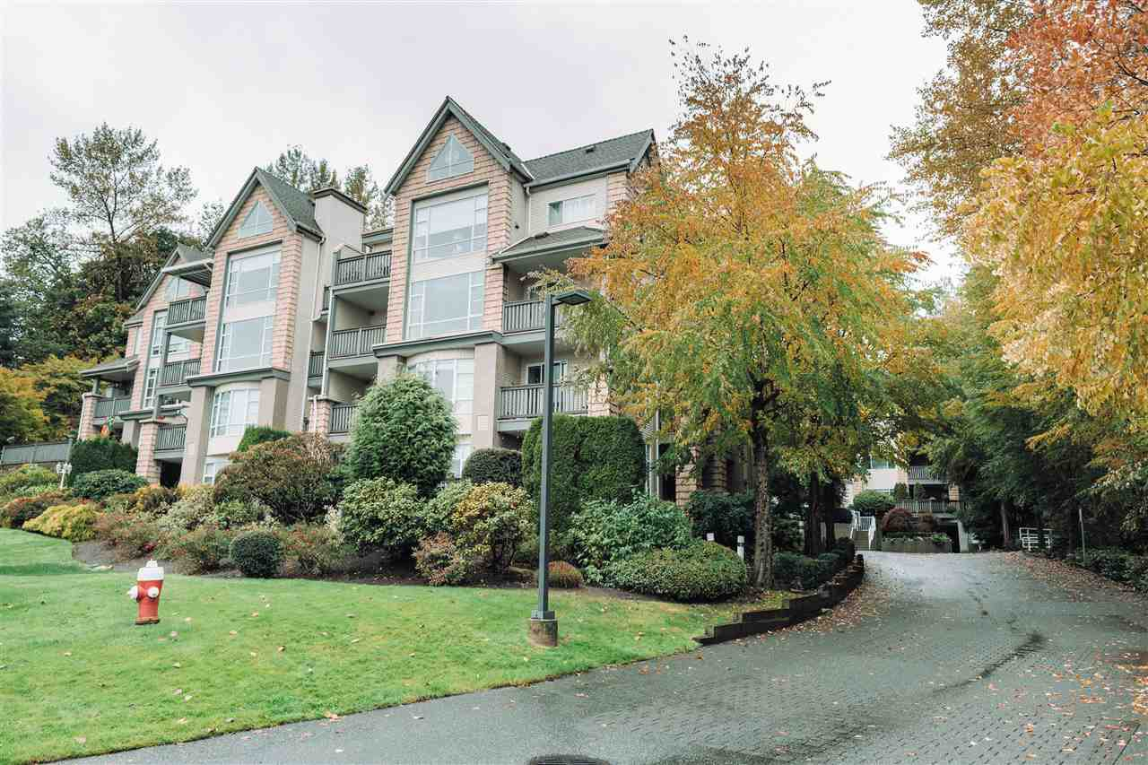 "Main Photo: 313 22233 RIVER Road in Maple Ridge: West Central Condo for sale in ""RIVER GARDENS"" : MLS®# R2509917"