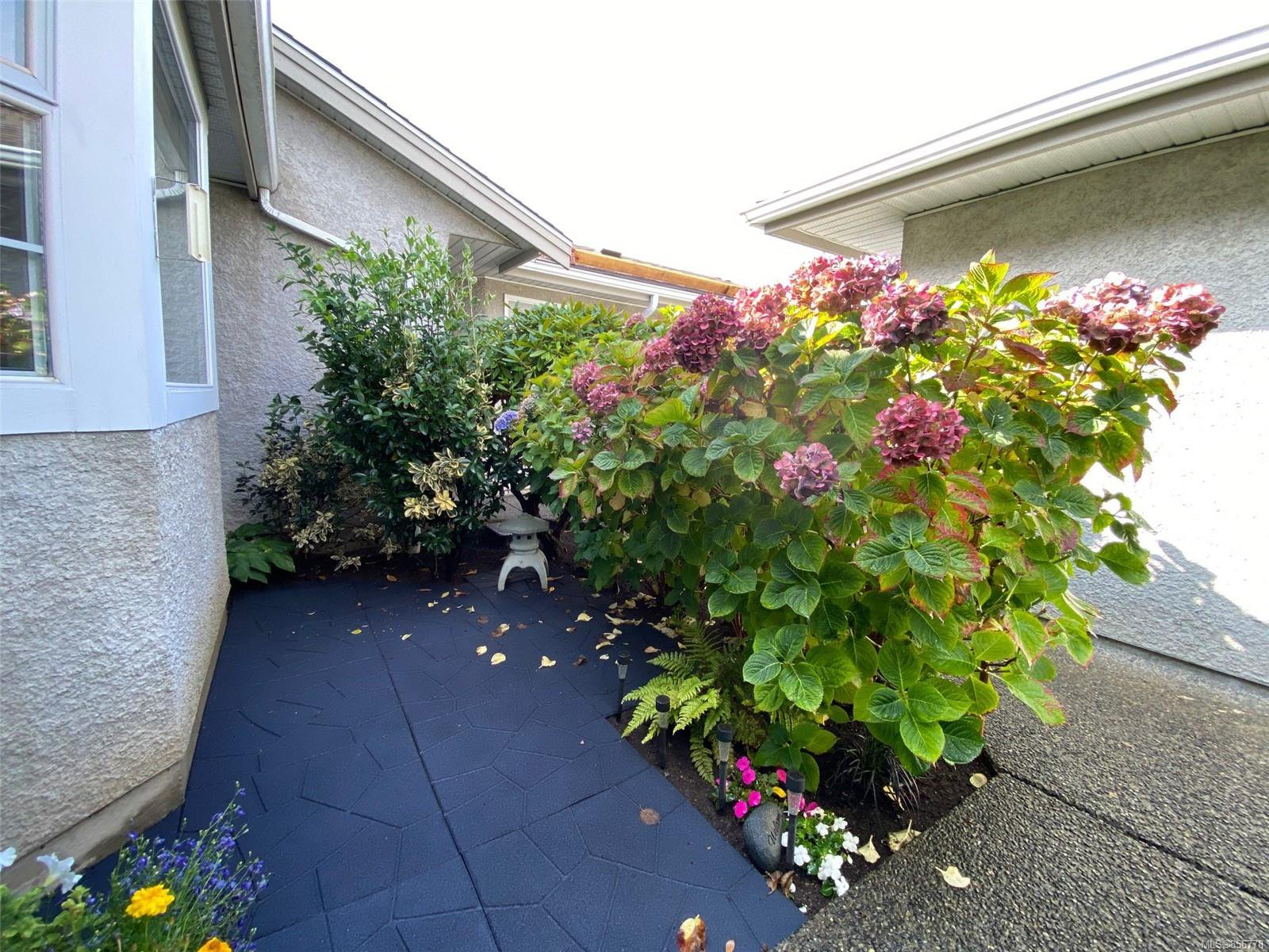 Photo 5: Photos: 48 2600 Ferguson Rd in : CS Turgoose Row/Townhouse for sale (Central Saanich)  : MLS®# 856778