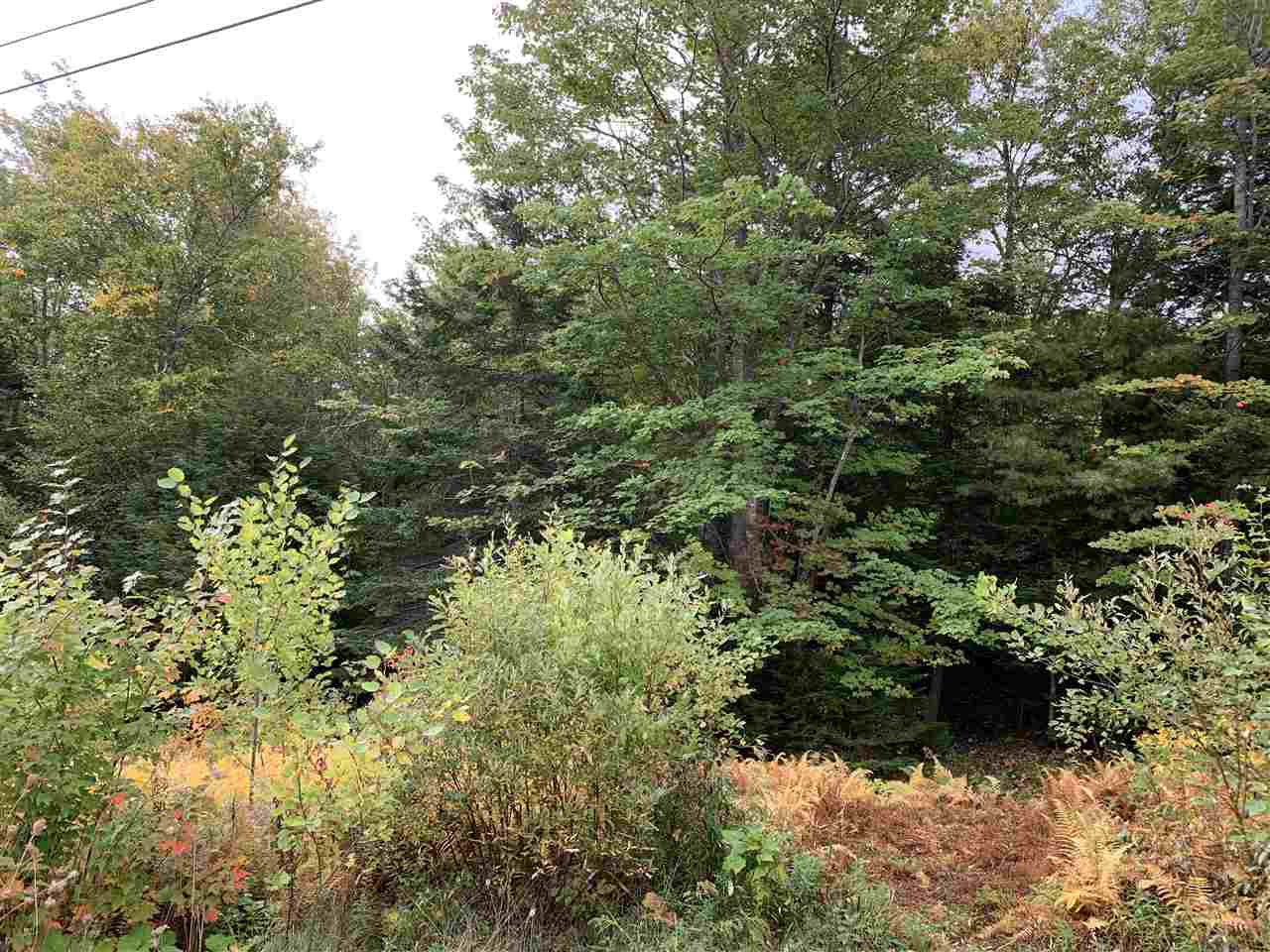 Main Photo: Lot 7-8 Logan Road in Frasers Mountain: 108-Rural Pictou County Vacant Land for sale (Northern Region)  : MLS®# 202020090