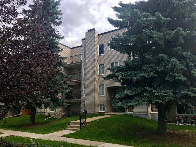 Main Photo: 402 9810 178 Street in Edmonton: Zone 20 Condo for sale : MLS®# E4207640