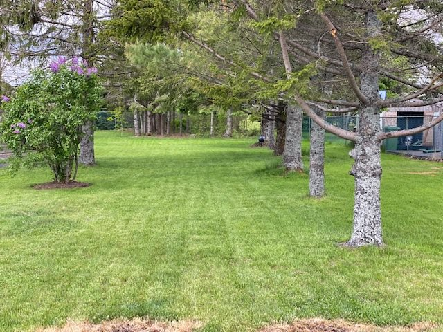 Main Photo: 303 Caldwell Road in Cole Harbour: 16-Colby Area Vacant Land for sale (Halifax-Dartmouth)  : MLS®# 202009758
