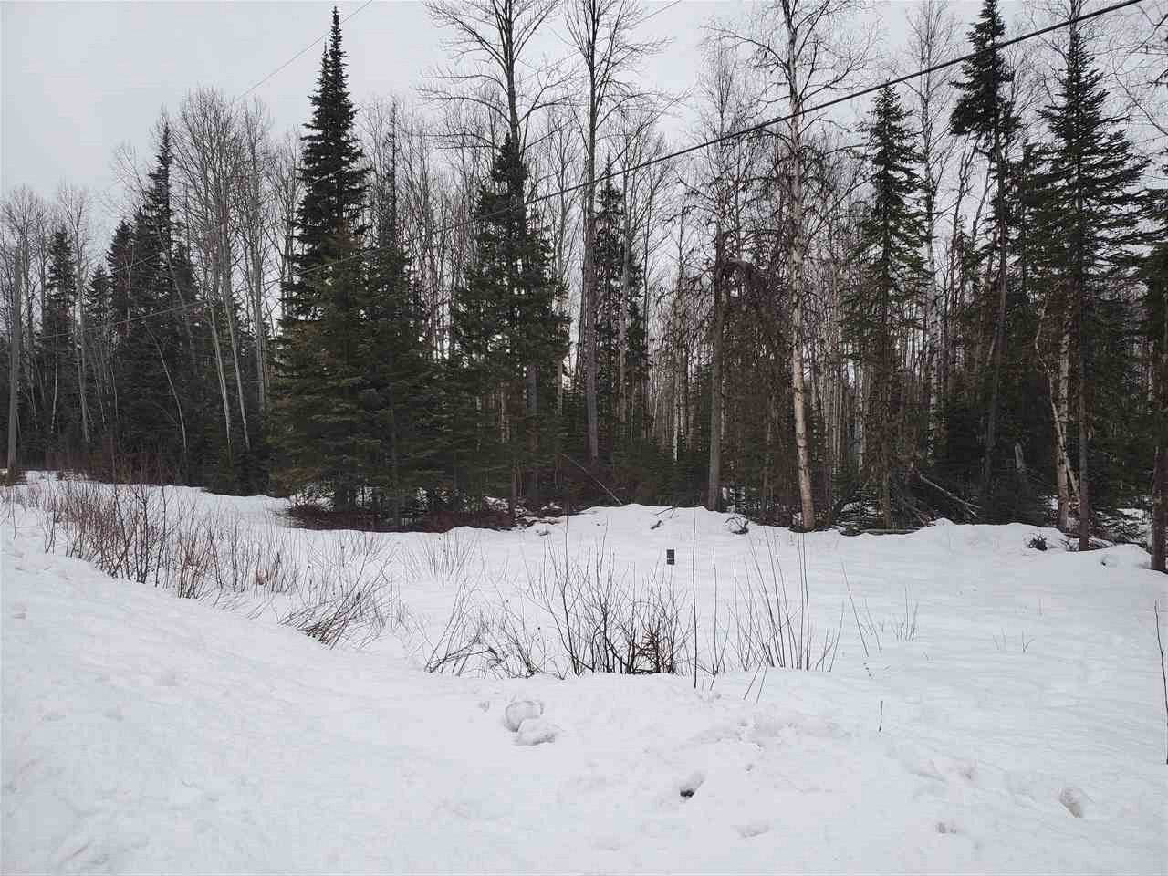 """Main Photo: LOT 1 GROVEBURN Road in Prince George: Tabor Lake Land for sale in """"TABOR LAKE"""" (PG Rural East (Zone 80))  : MLS®# R2528542"""