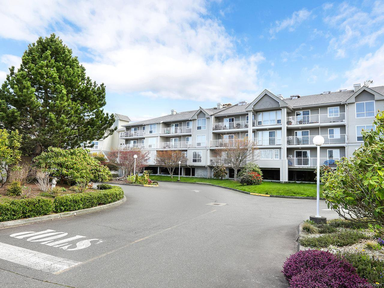 Photo 4: Photos: 311 155 Erickson Rd in CAMPBELL RIVER: CR Willow Point Condo for sale (Campbell River)  : MLS®# 829801