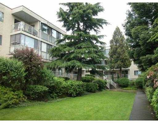 "Main Photo: 210 8040 BLUNDELL Road in Richmond: Garden City Condo for sale in ""BLUNDELL PLACE"" : MLS®# V715076"