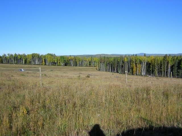 Main Photo: : Edson Rural Land for sale ()  : MLS®# 22122