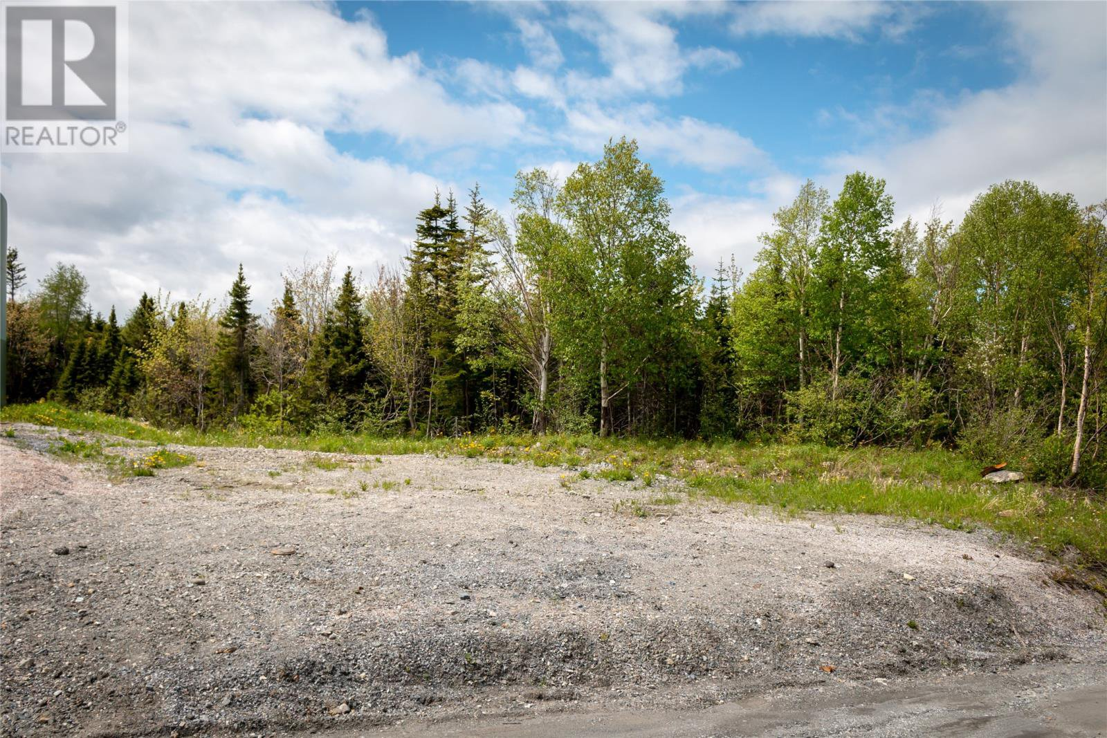 Main Photo: Parcel 045-120 Elizabeth Street in Corner Brook: Vacant Land for sale : MLS®# 1165834